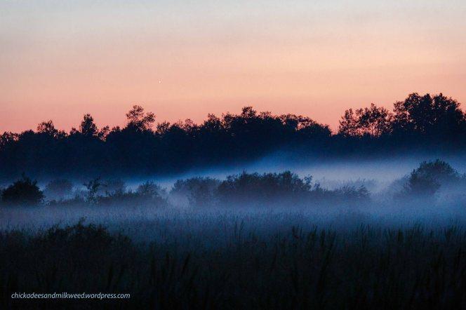 Country-Landscape-Fog-Night
